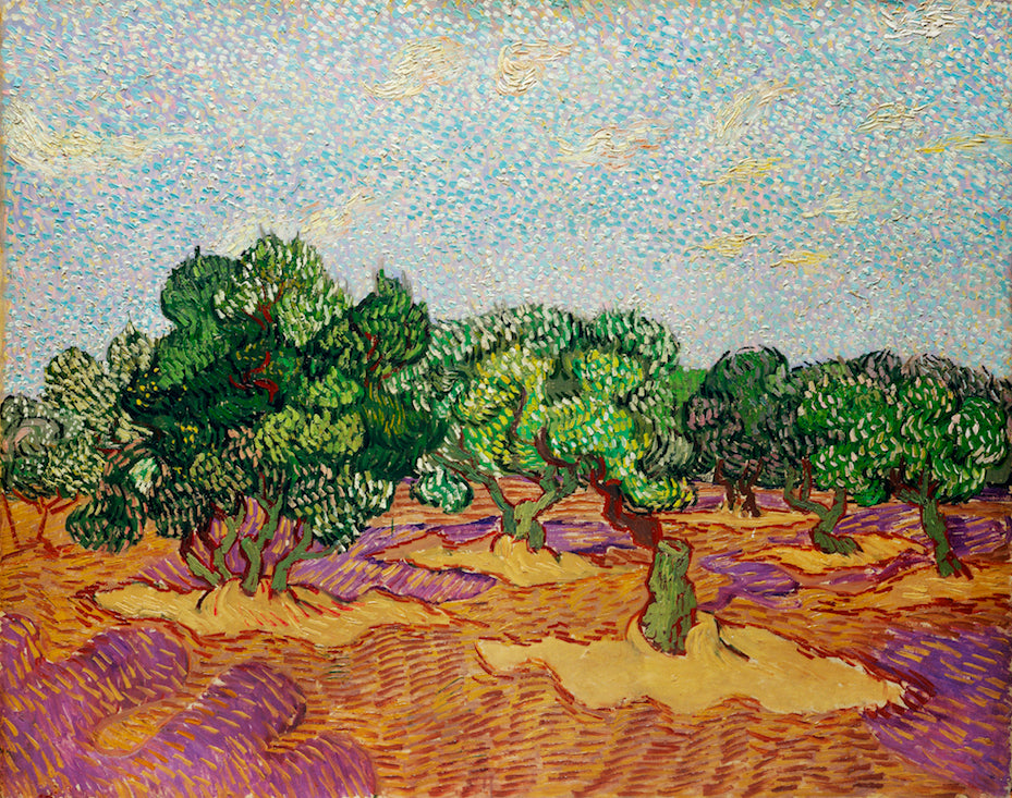 Olive Trees by Vincent Van Gogh