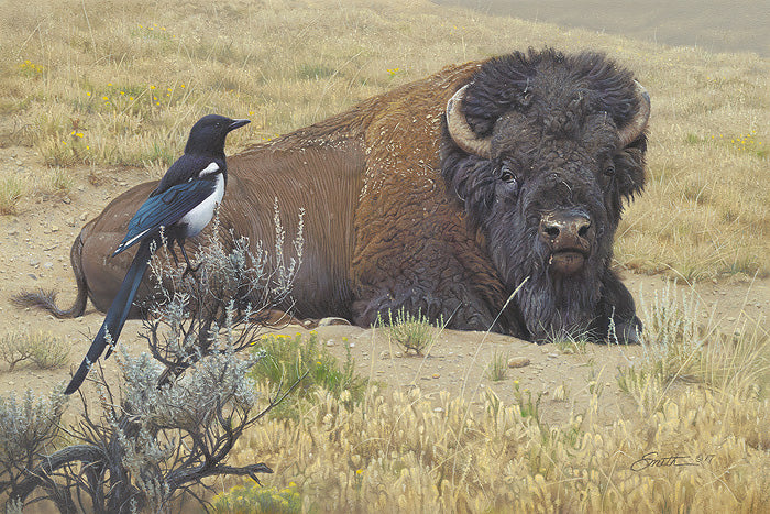 Prairie Home Companions by Daniel Smith