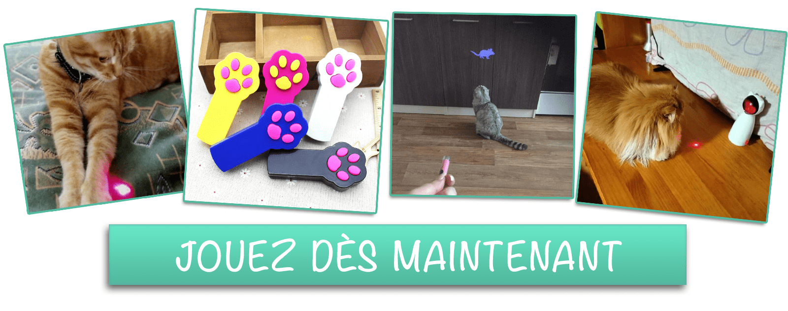 Voir Collection Lasers pour Chat