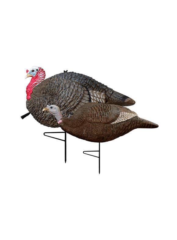 PRIMOS Gobbstopper Jake & Hen Decoy Combo | Turkey Decoy | PRIMOS Hunting - Oasis Outback