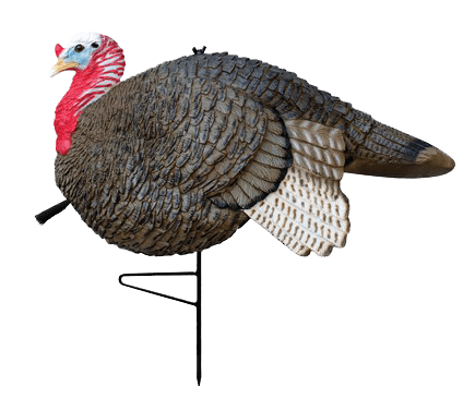 PRIMOS Gobbstopper Jake Decoy | Turkey Decoy | PRIMOS Hunting - Oasis Outback
