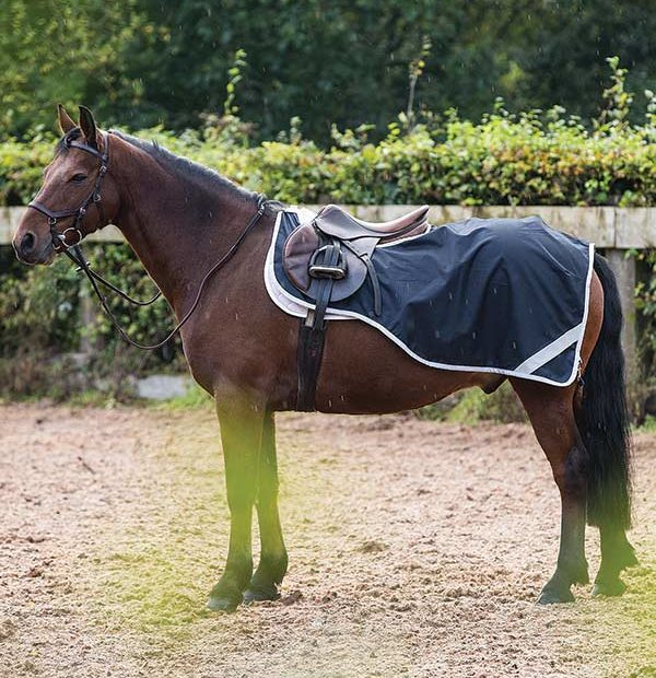 Horseware Amigo® Competition Sheet - Hoofprints Innovations