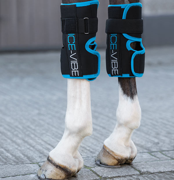Horseware Ice-Vibe Knee Wrap - Hoofprints Innovations