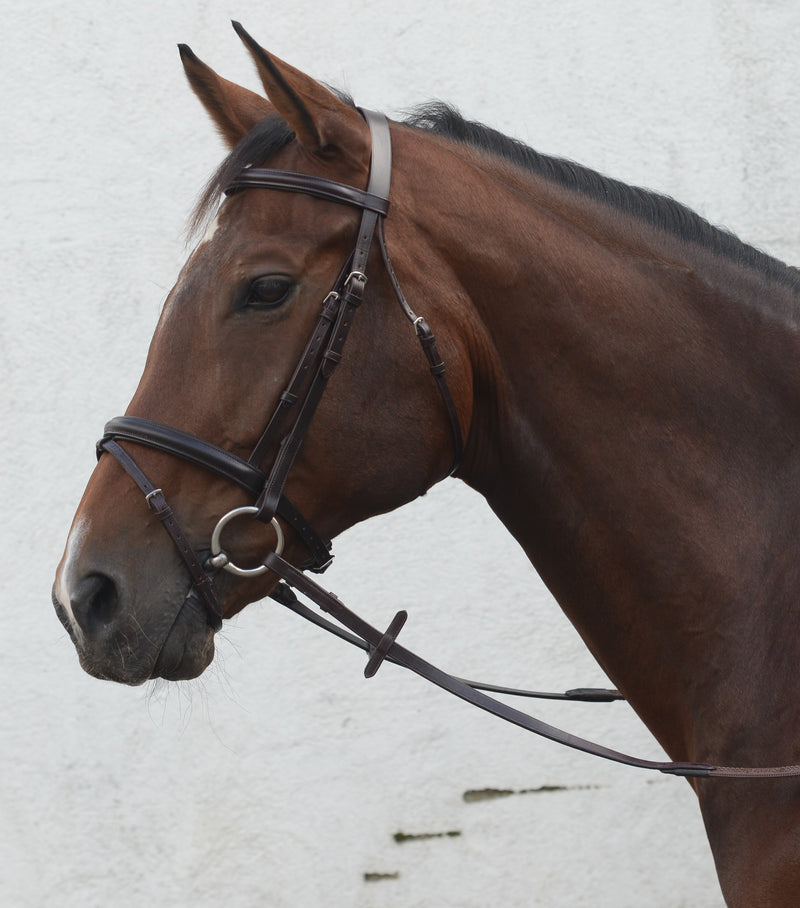 Mackey Classic Flash Bridle