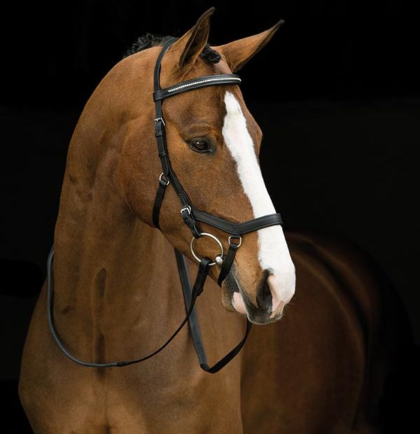 Horseware Rambo® Micklem® Diamante Competition Bridle - Hoofprints Innovations