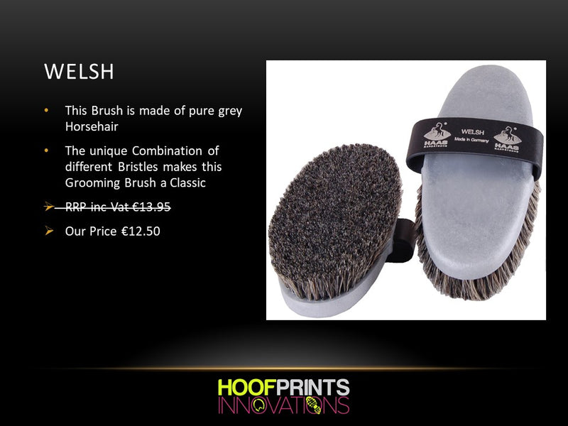 Haas Welsh Grooming Brush - Hoofprints Innovations