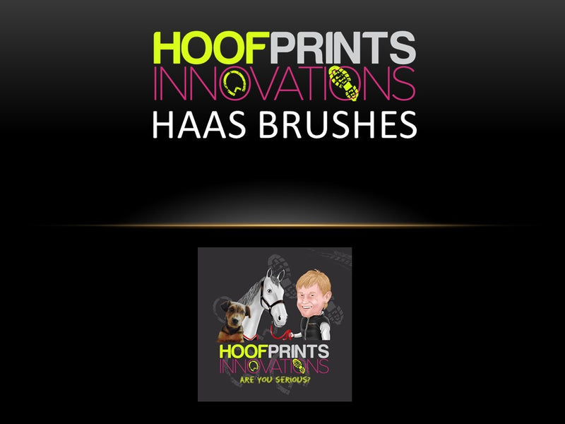 Haas Diamond Gloss Grooming Brush - Hoofprints Innovations