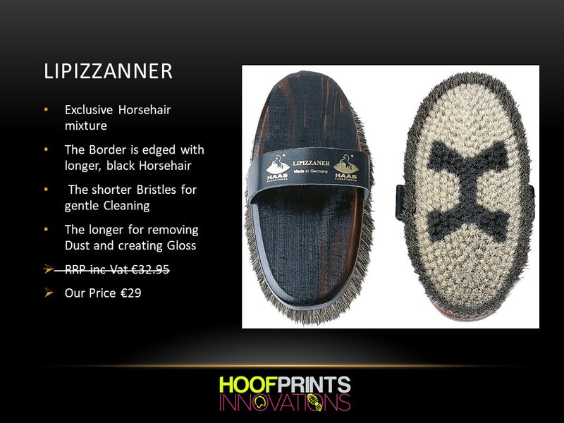 Haas Lipizzanner Grooming Brush - Hoofprints Innovations