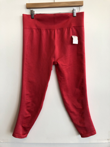 Aerie Athletic Pants Size Extra Large