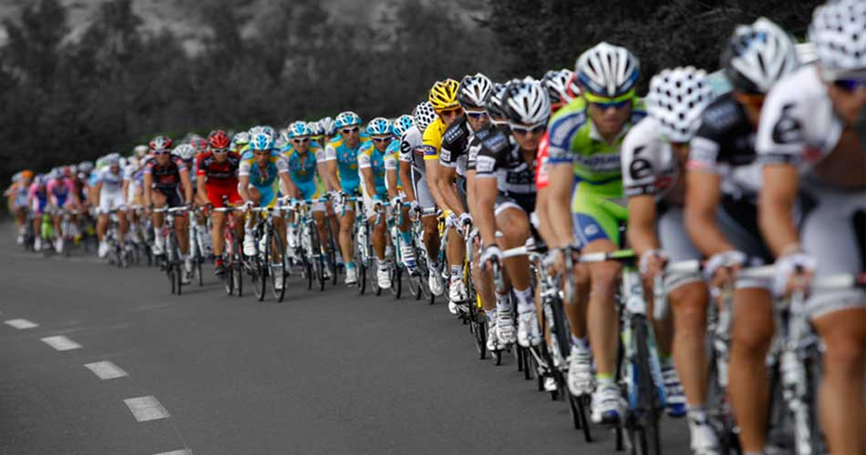 Tour de France London 2014, Hamilton and Hare recommends