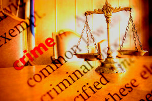 Criminal Justice, Introduction to