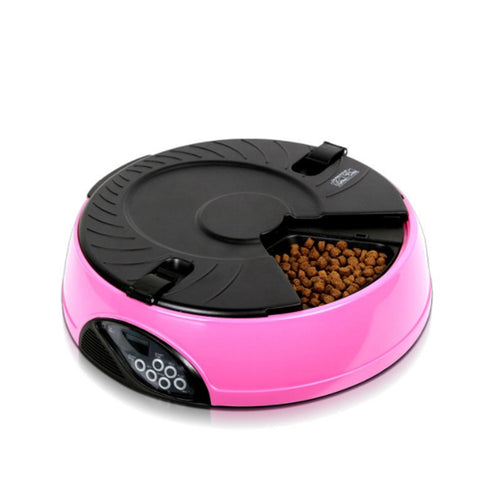 Pet automatic feeding machine