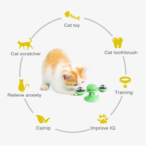 2-in-1 Interactive Windmill Cat Toy