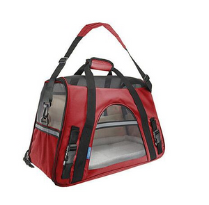 Fashionable Pet Carrier