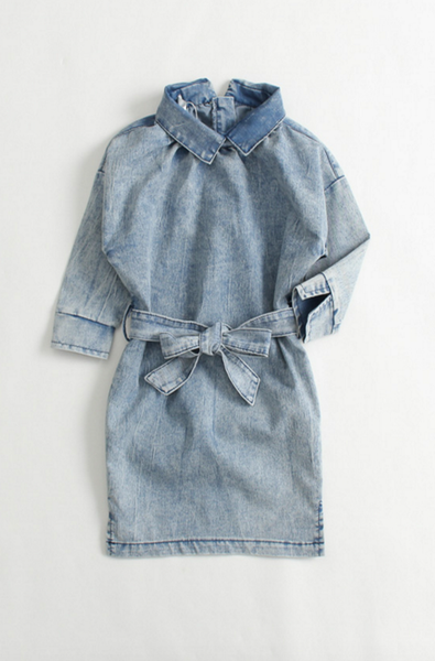Denim Crush Chambray Dress - Posh Peyton
