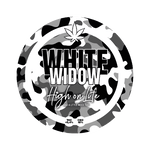 Carica l'immagine nel visualizzatore di Gallery, White Widow – CBD 18% - Glass House - Cannabis Light