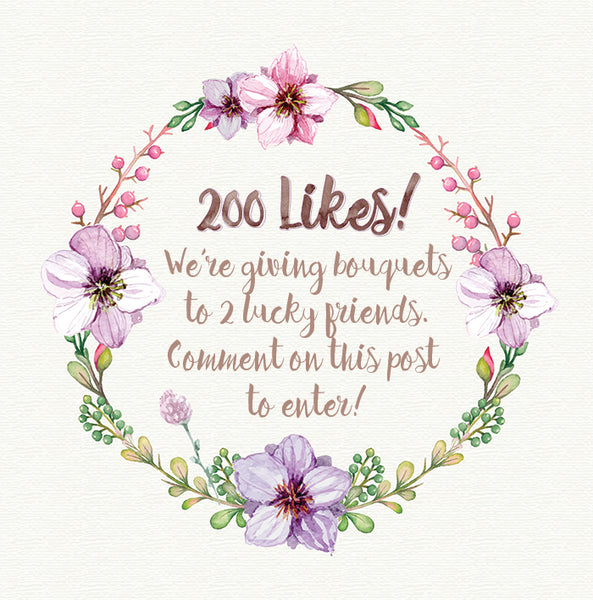 Facebook contest 200 Likes!