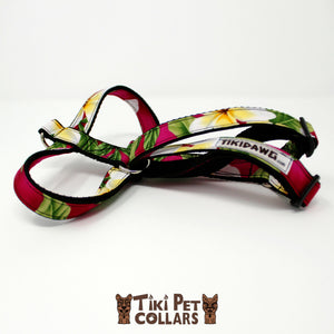 Plumeria Classic White Yellow Harness (Turquoise no longer available) - Tiki Pet Collars made on Kauai, Hawaii
