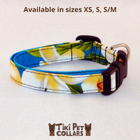 Plumeria Classic White Yellow Dawg Collar (Turquoise no longer available) - Tiki Pet Collars made on Kauai, Hawaii