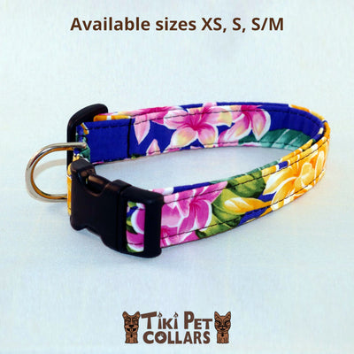 Plumeria Multi Color Dawg Collar - Tiki Pet Collars made on Kauai, Hawaii