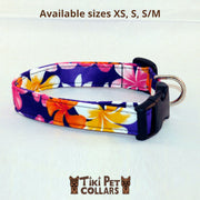 Plumeria Multi and Tiare White (lei) Dawg Collar - Tiki Pet Collars made on Kauai, Hawaii