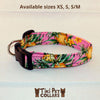 Pineapples - Vintage Dawg Collar - Tiki Pet Collars made on Kauai, Hawaii