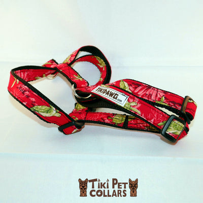 Turtles - Honu Harness - Tiki Pet Collars made on Kauai, Hawaii