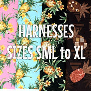 Pineapples - Vintage Harness