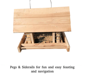 Cedar Bird Feeder with Suet Holders