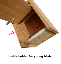 Load image into Gallery viewer, Cedar Bluebird House