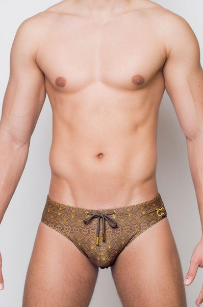 V10 PERSIA SWIM BRIEF - BRWN