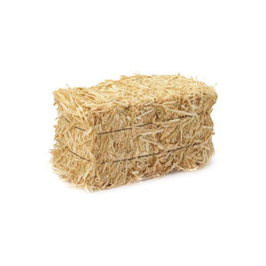Medium Bale of Hay