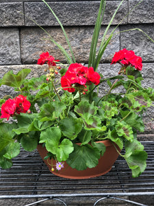 "10"" Geranium Color Bowl"