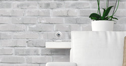 Arlo Cameras: Arlo Q On Shelf Next To Plant In Front Of White Brick Wall