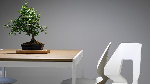 IKEA Smart Home- Tree on a table with white chairs