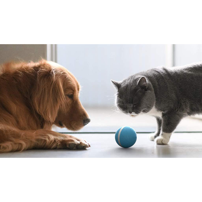 Cheerble Wicked Ball 100% Automatic and Interactive Ball for Dogs and Cats