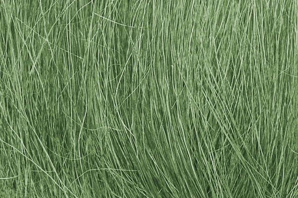 Field Grass, Medium Green/8g