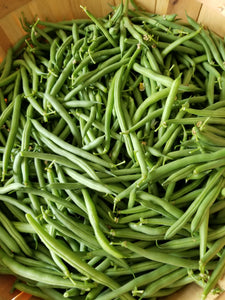 Beans - Green or Yellow