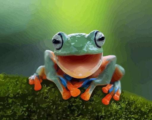Frog Paint By Numbers (4921808158851)