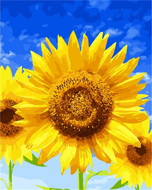 Sunflowers Paint By Numbers (4780328288387)