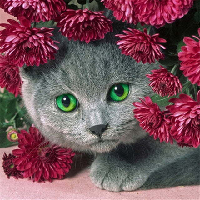 Cat With Red Flower Diamond Painting