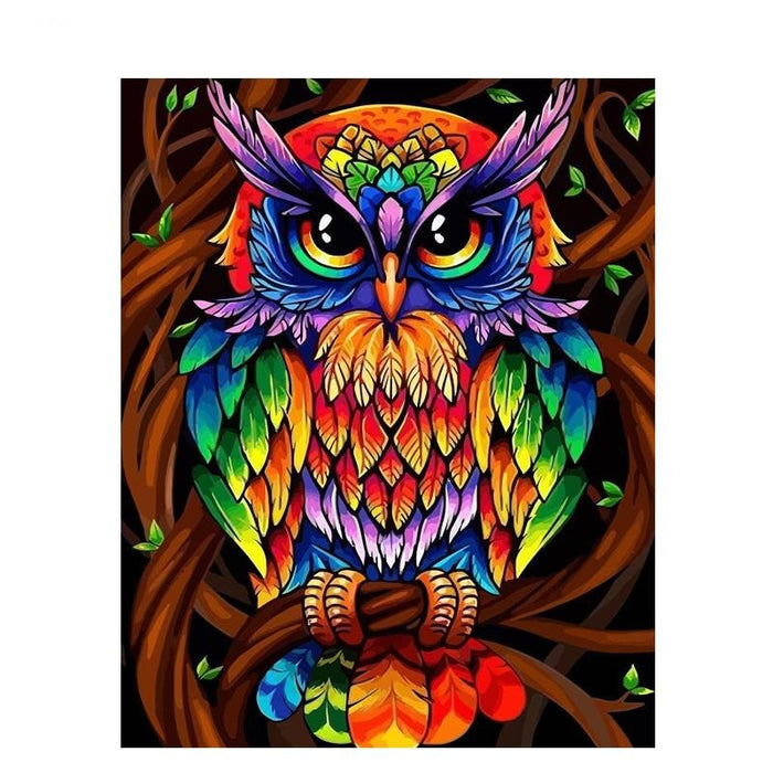 Colorful Owl Paint By Numbers (4749700726915)