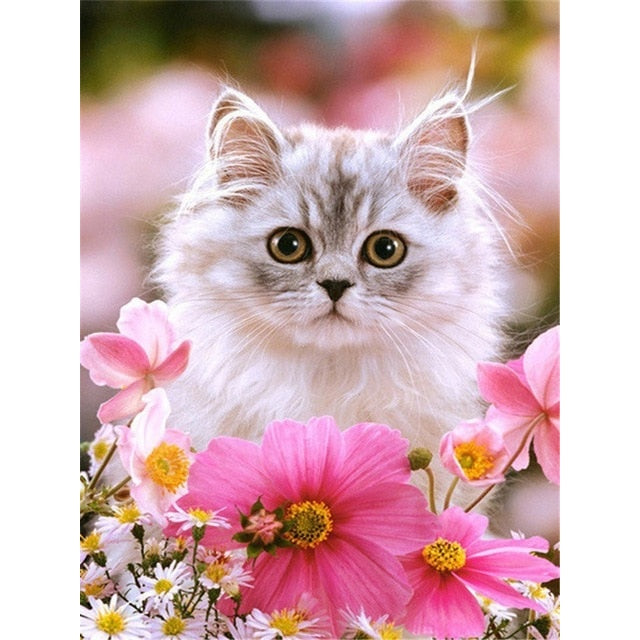 Cat With Pink Flower Diamond Painting