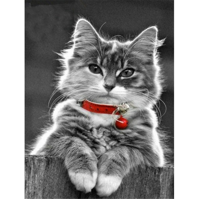 Cat With Red Band Diamond Painting