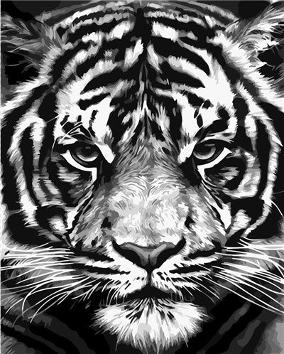 Black And White Tiger Paint By Numbers (4796629319811)