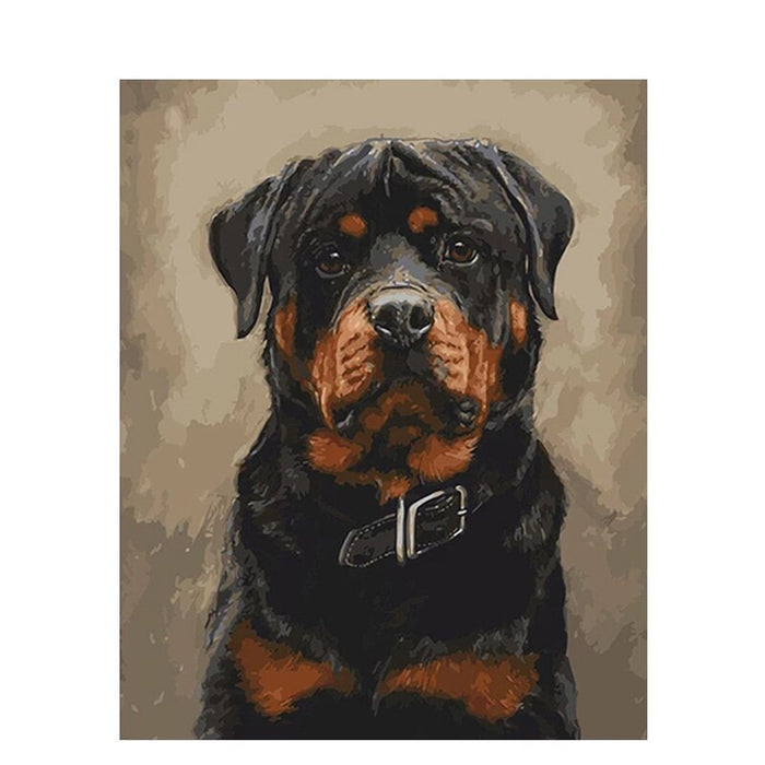 Black Dog Paint By Numbers (4727001874563)