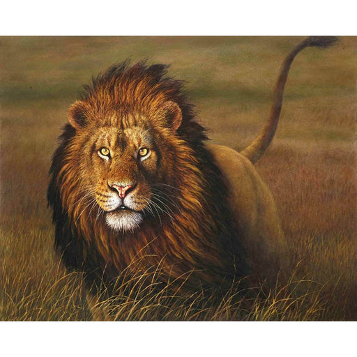 Lion Hunting Paint By Numbers (4729025462403)