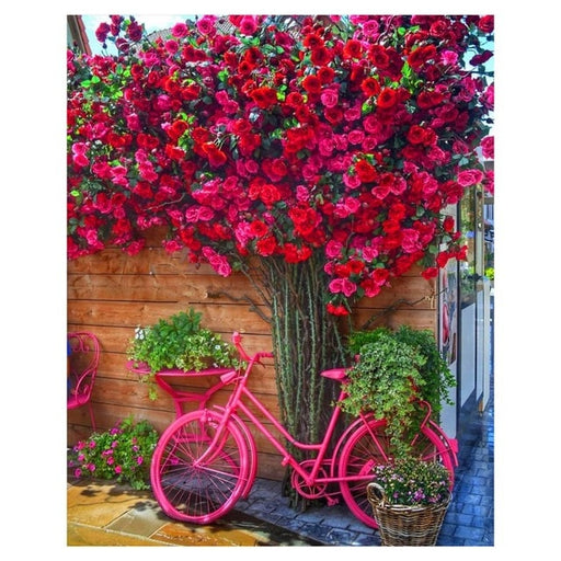 Spring Red Flowers And Bike Paint By Numbers (4780328190083)