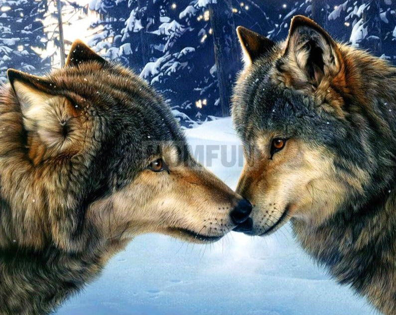 Two Lovely Wolf Diamond Painting