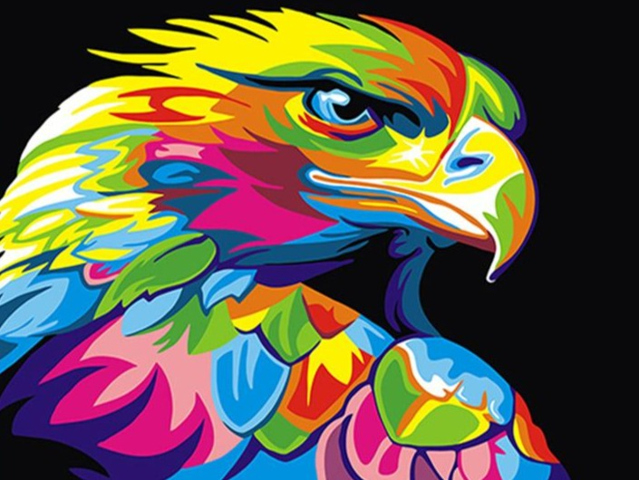 Colorful eagle abstract animal painting by numbers handmade with paint colors on canvas drawing for coloring by numbers for (4877968212099)